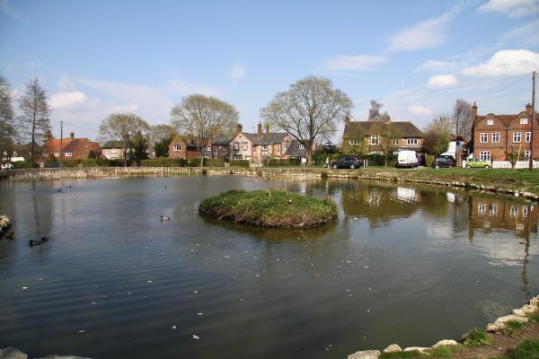 Tylers Green Village Pond
